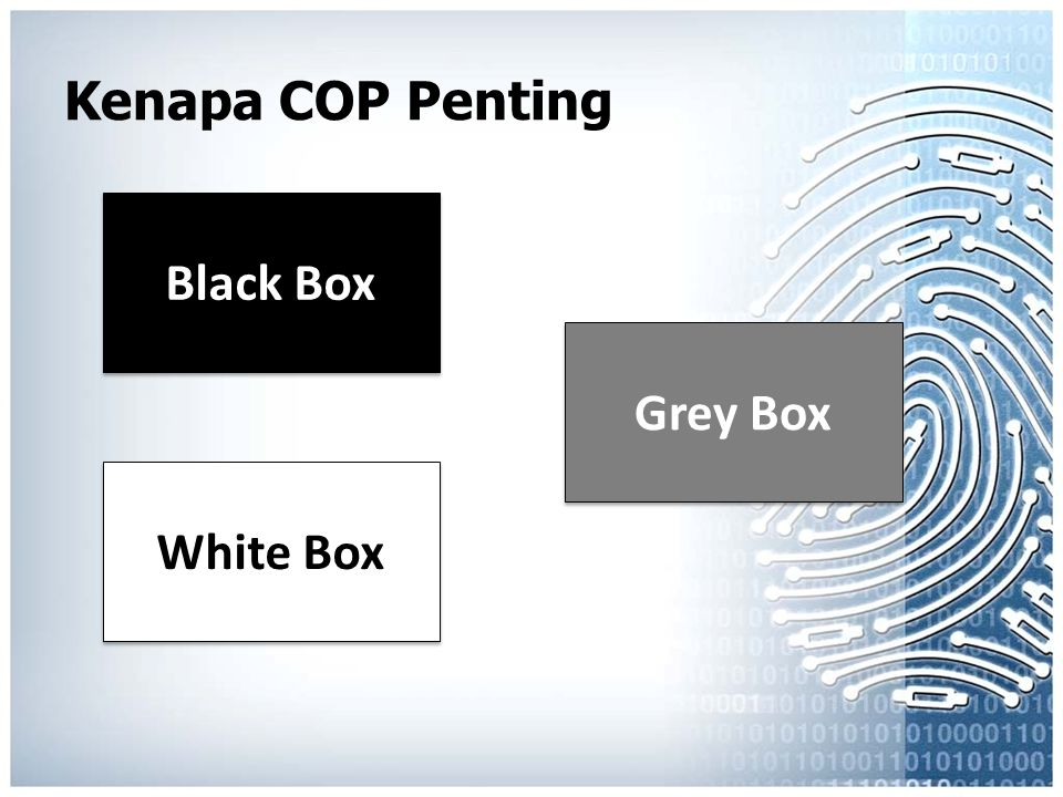 Black Box Grey Box White Box