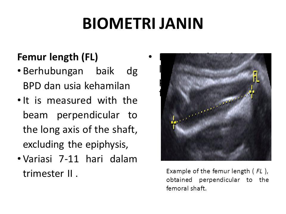 BIOMETRI JANIN Femur length (FL)