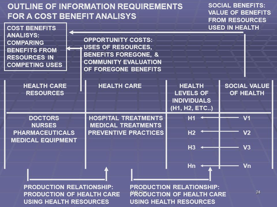 OUTLINE OF INFORMATION REQUIREMENTS FOR A COST BENEFIT ANALISYS