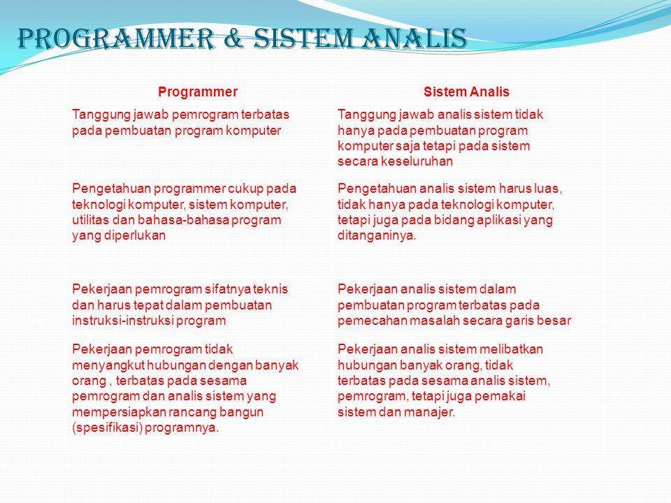 Programmer & Sistem Analis