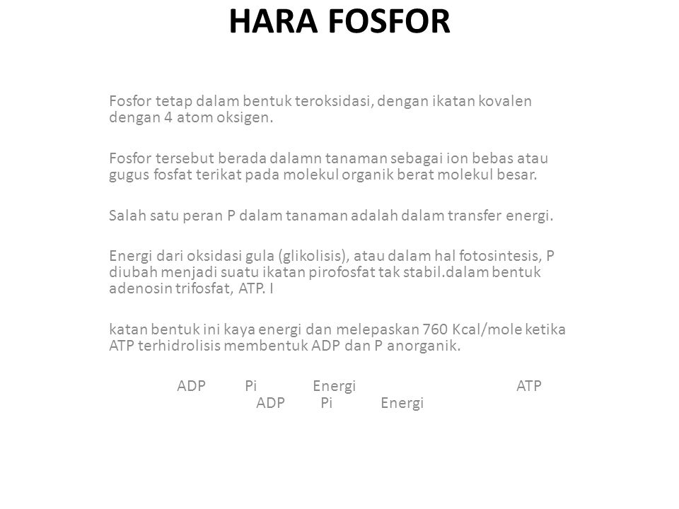 HARA FOSFOR Fosfor tetap dalam bentuk teroksidasi, dengan ikatan kovalen dengan 4 atom oksigen.