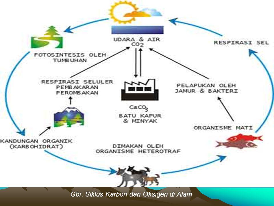 Gbr. Siklus Karbon dan Oksigen di Alam