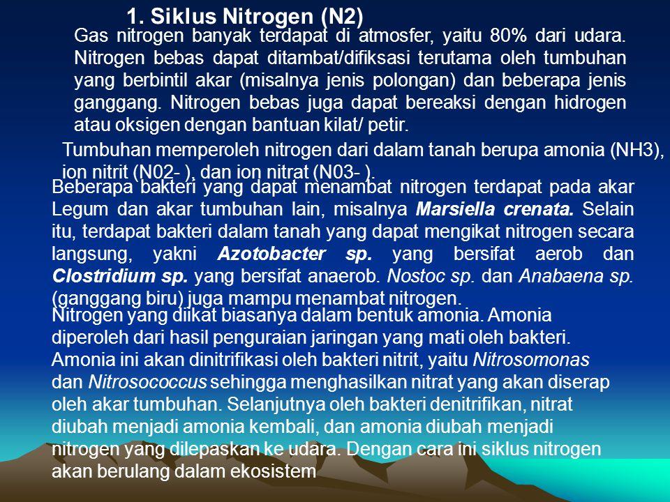 1. Siklus Nitrogen (N2)