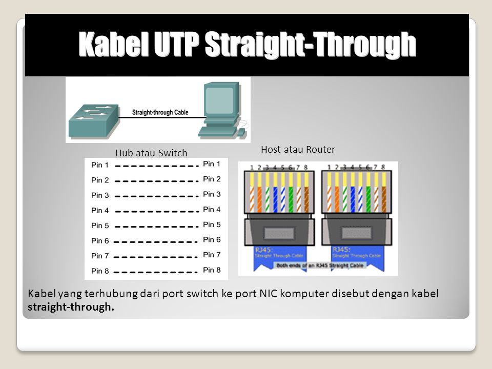 Host atau Router Hub atau Switch.
