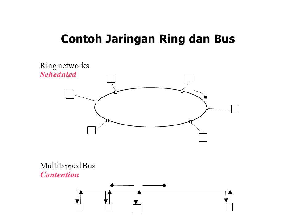 Contoh Jaringan Ring dan Bus