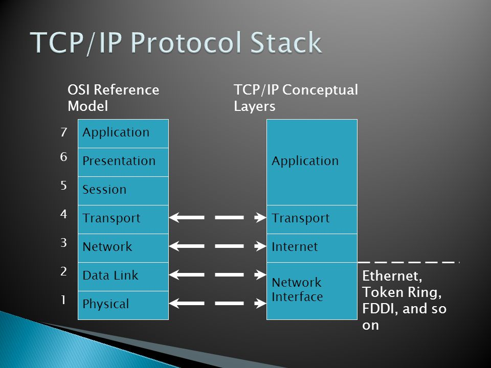 TCP/IP Protocol Stack Ethernet, Token Ring, FDDI, and so on