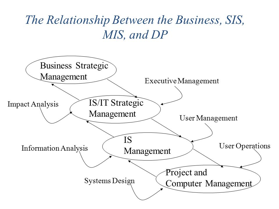 The Relationship Between the Business, SIS, MIS, and DP