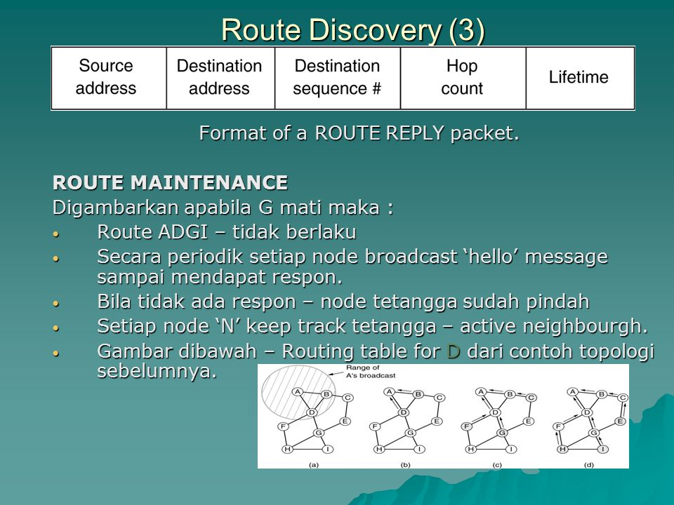 Format of a ROUTE REPLY packet.