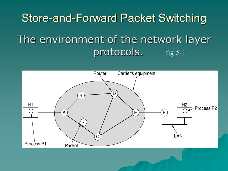 Store-and-Forward Packet Switching