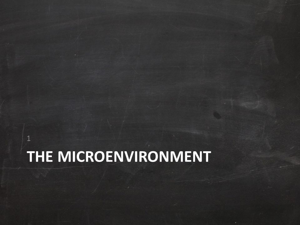 1 The microenvironment