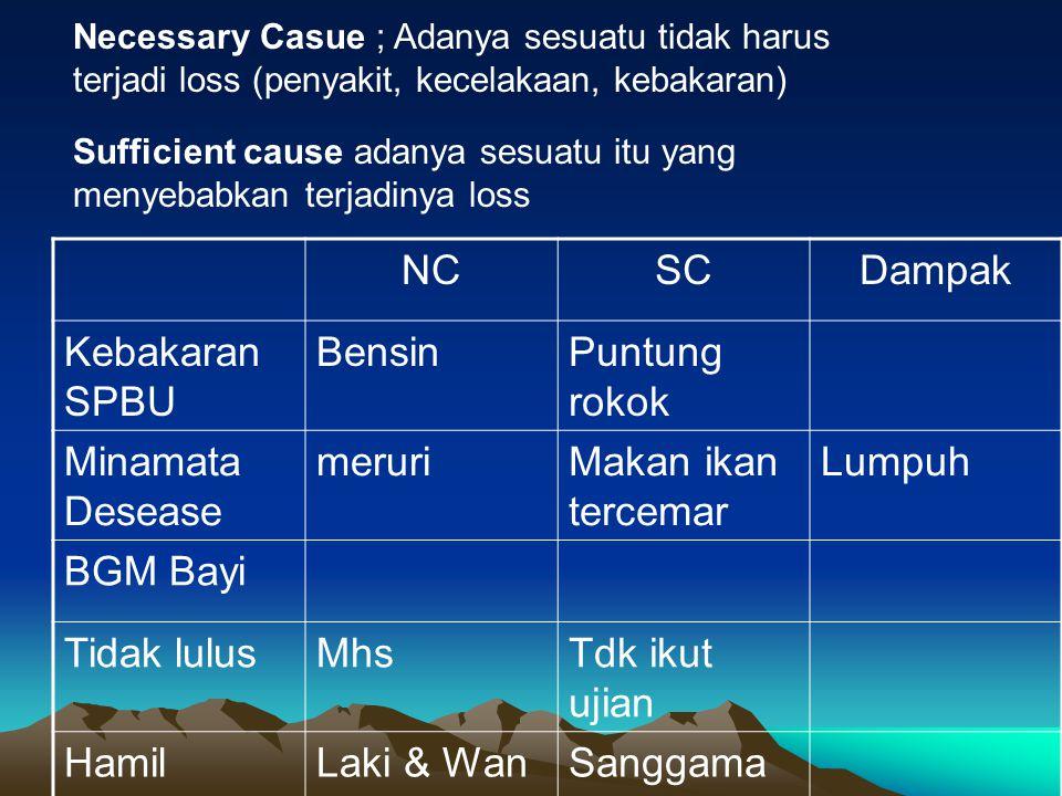 NC SC Dampak Kebakaran SPBU Bensin Puntung rokok Minamata Desease
