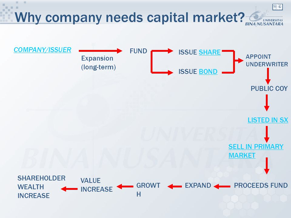 Why company needs capital market