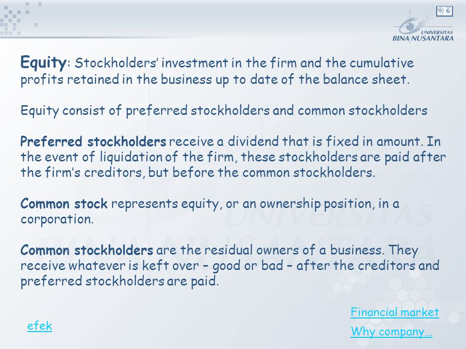 Equity: Stockholders' investment in the firm and the cumulative profits retained in the business up to date of the balance sheet.