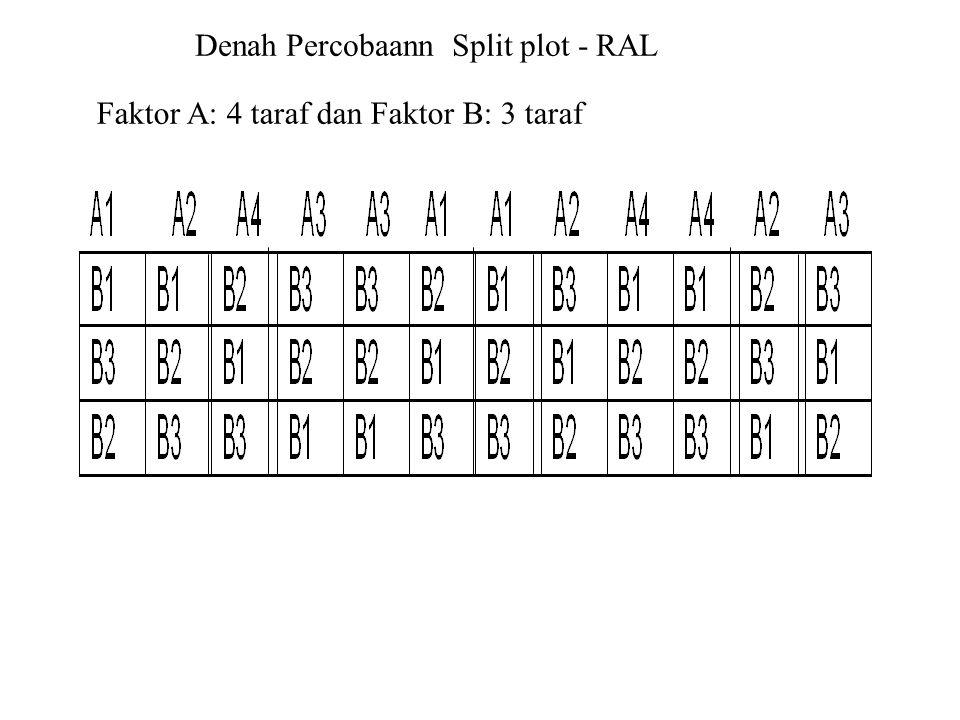Denah Percobaann Split plot - RAL