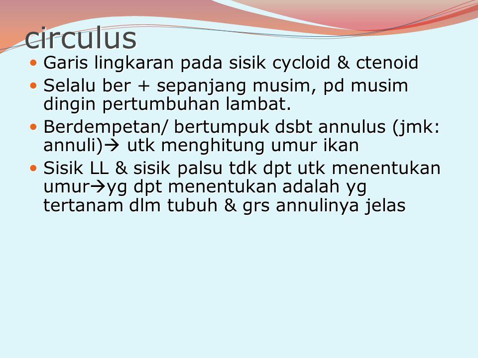 circulus Garis lingkaran pada sisik cycloid & ctenoid