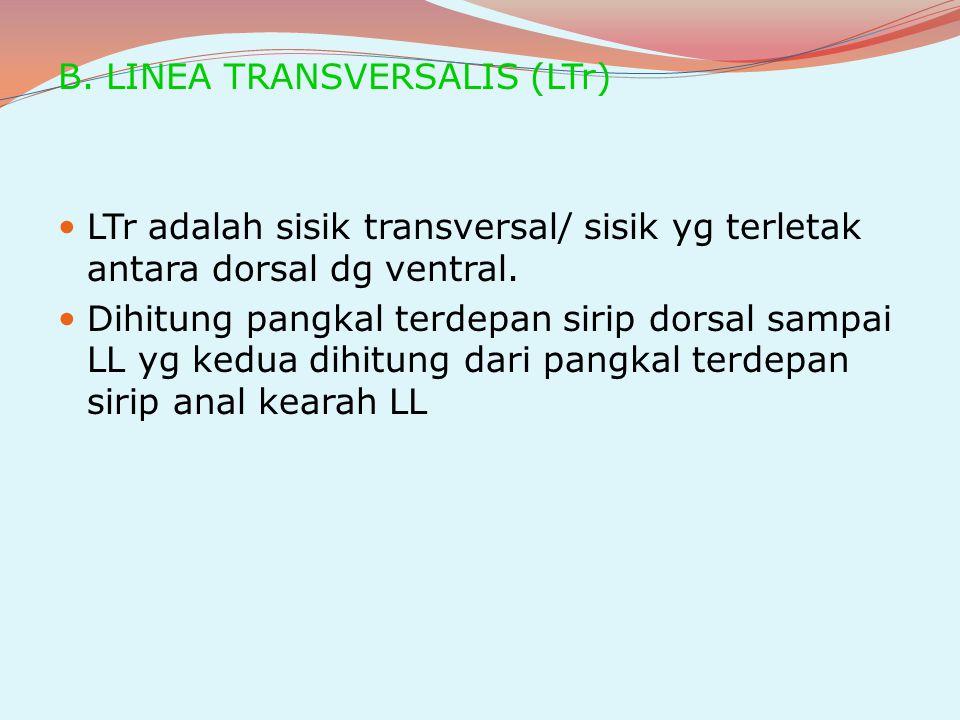 B. LINEA TRANSVERSALIS (LTr)
