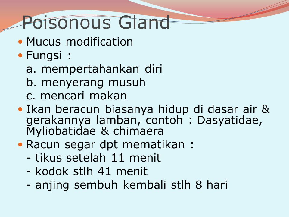 Poisonous Gland Mucus modification Fungsi : a. mempertahankan diri