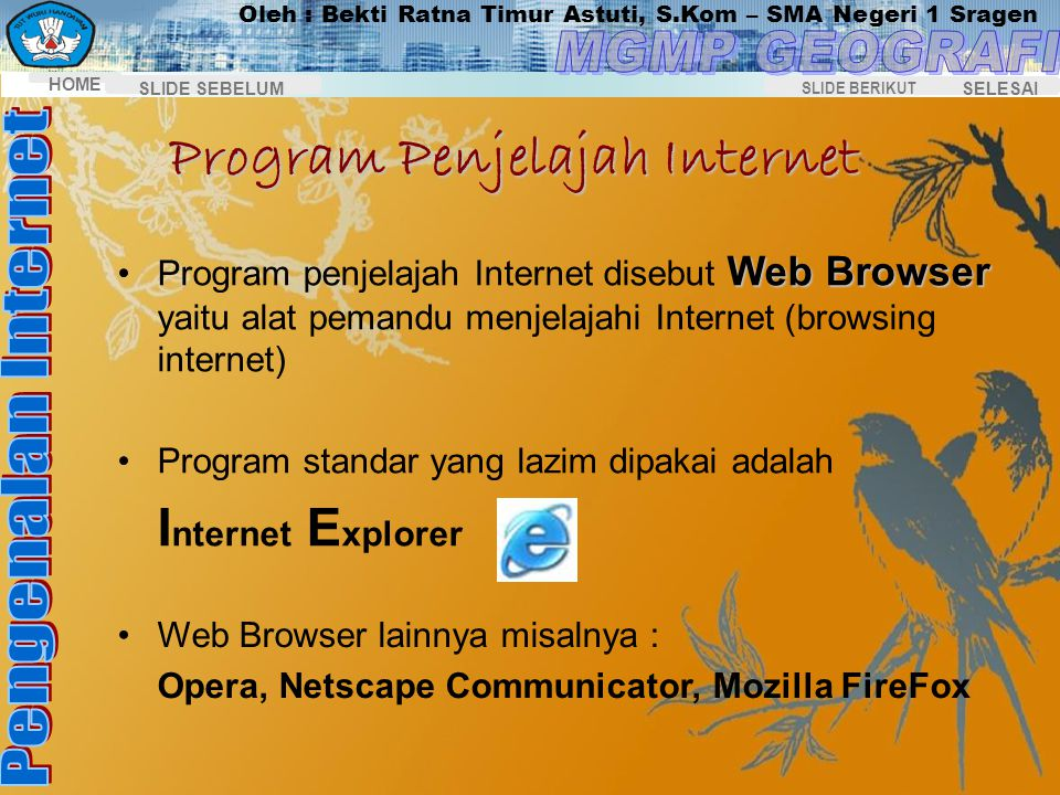 Program Penjelajah Internet