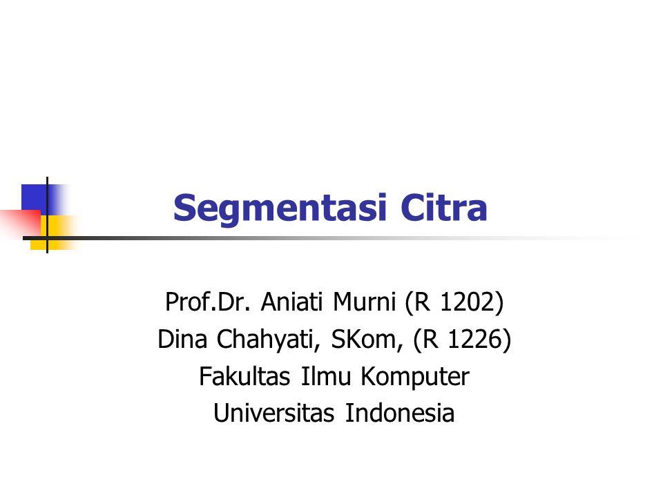 Segmentasi Citra Prof.Dr. Aniati Murni (R 1202)