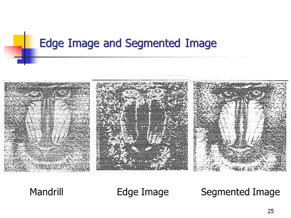 Edge Image and Segmented Image