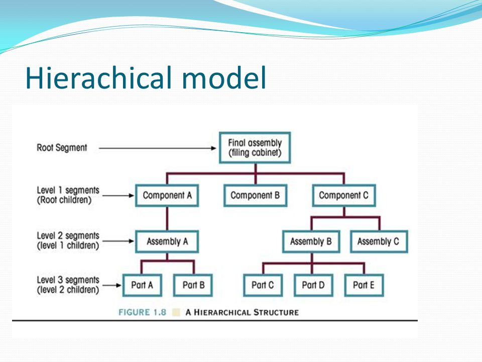 Hierachical model