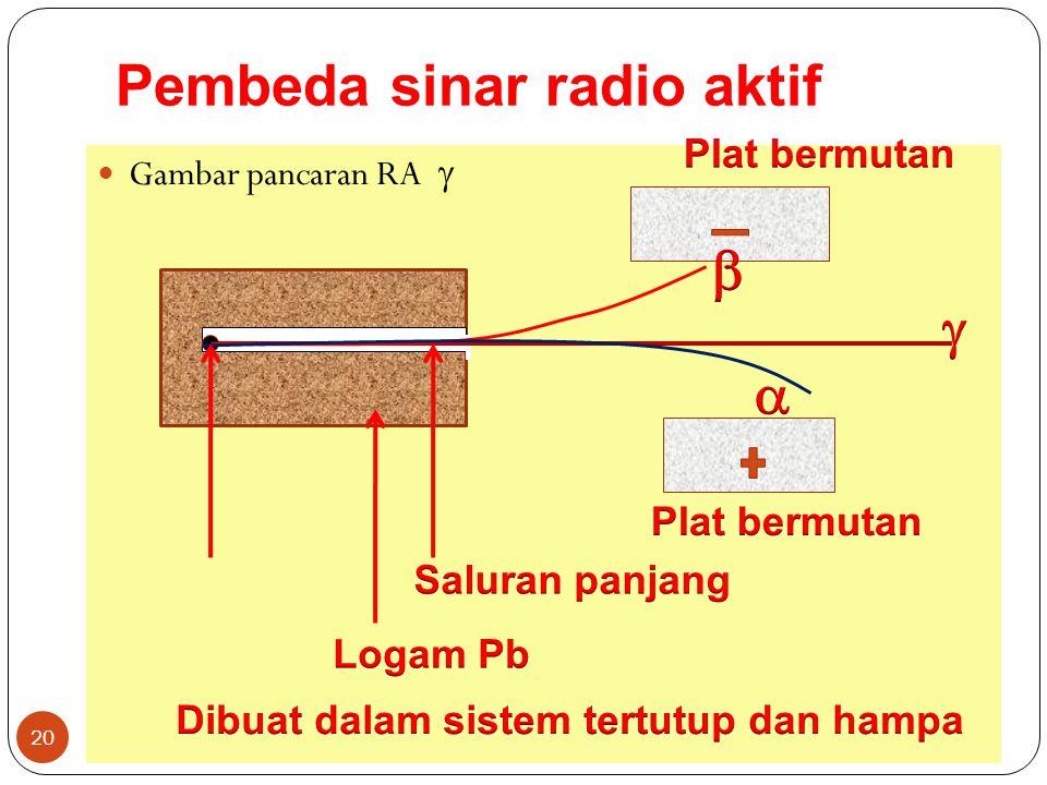 Pembeda sinar radio aktif