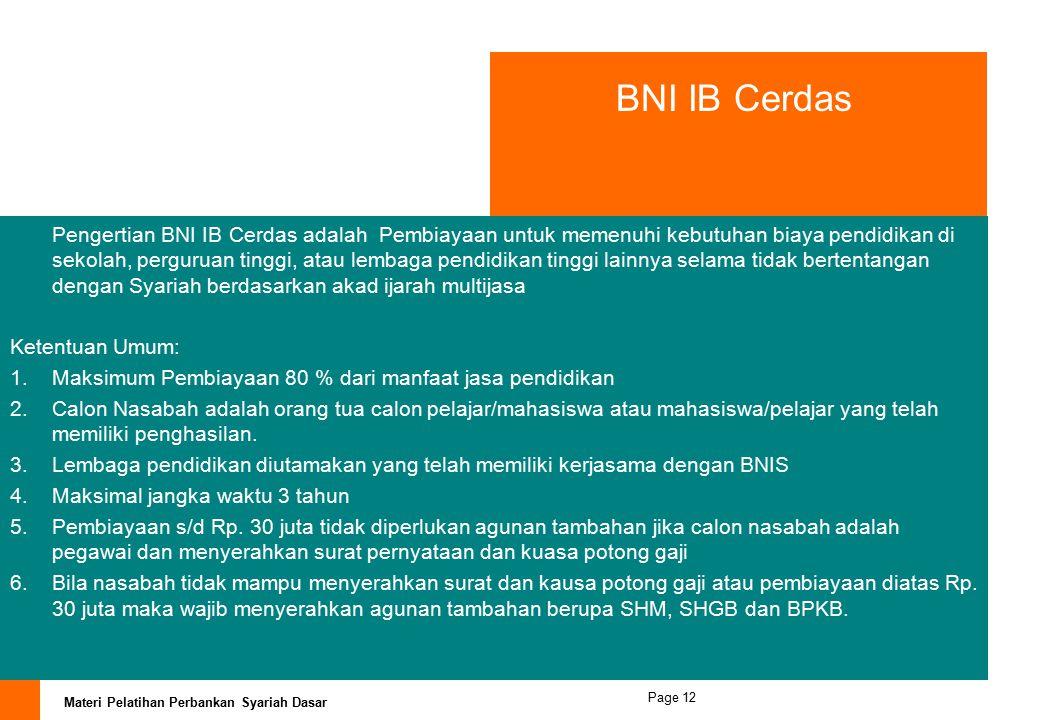 BNI IB Cerdas