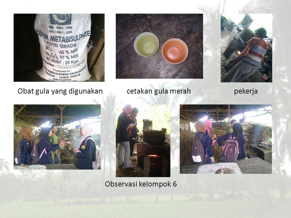 Obat gula yang digunakan cetakan gula merah pekerja Observasi kelompok 6