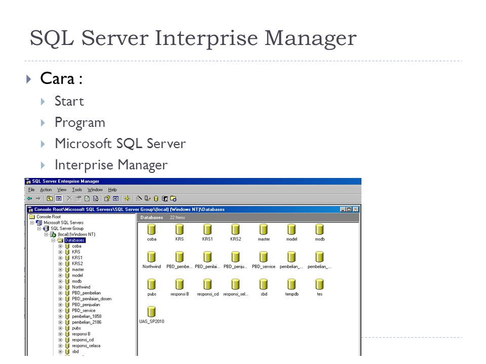 SQL Server Interprise Manager