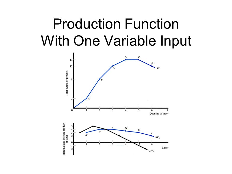 Production Function With One Variable Input