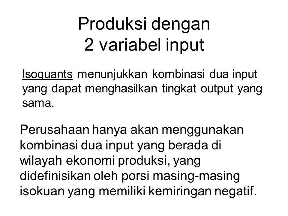 Produksi dengan 2 variabel input