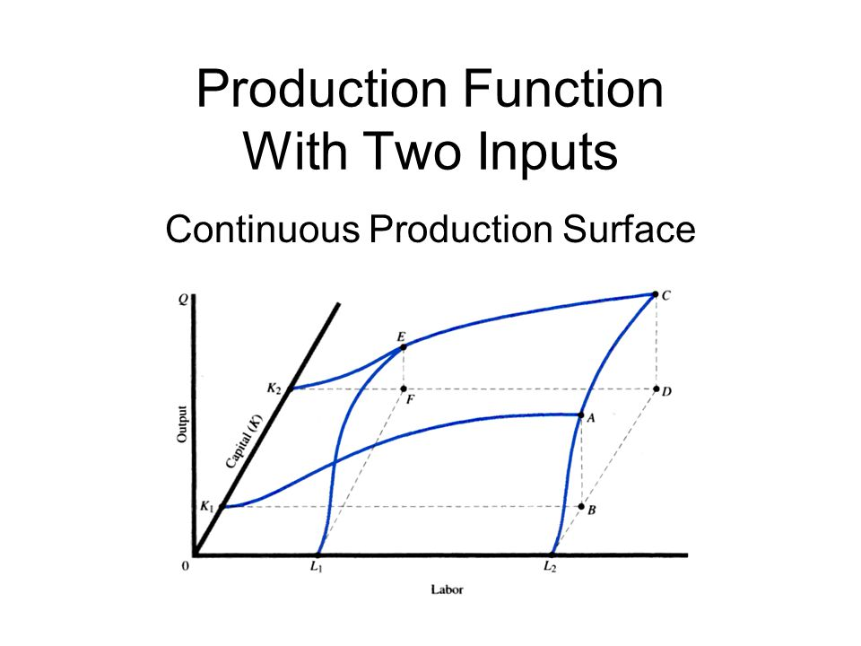 Production Function With Two Inputs