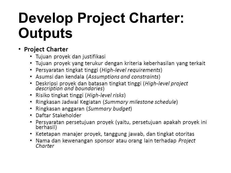 Develop Project Charter: Outputs