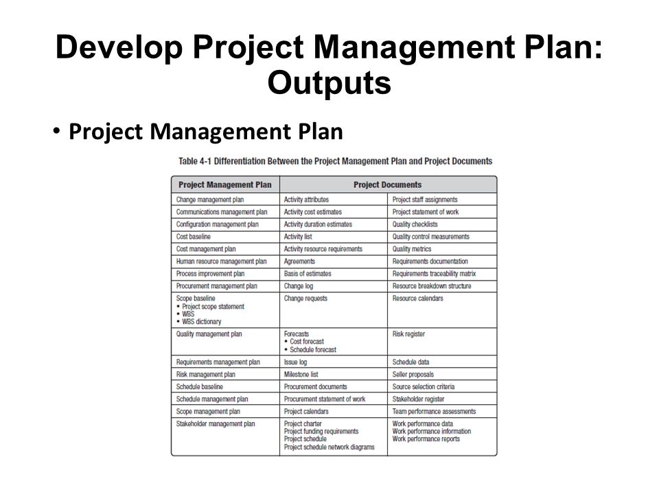 Develop Project Management Plan: Outputs