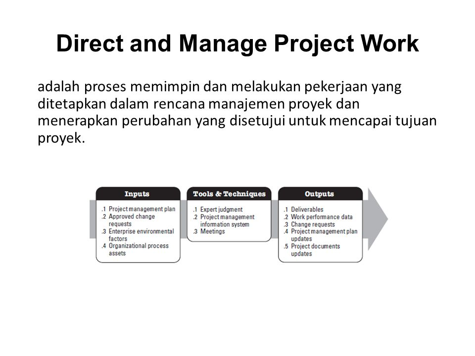 Direct and Manage Project Work