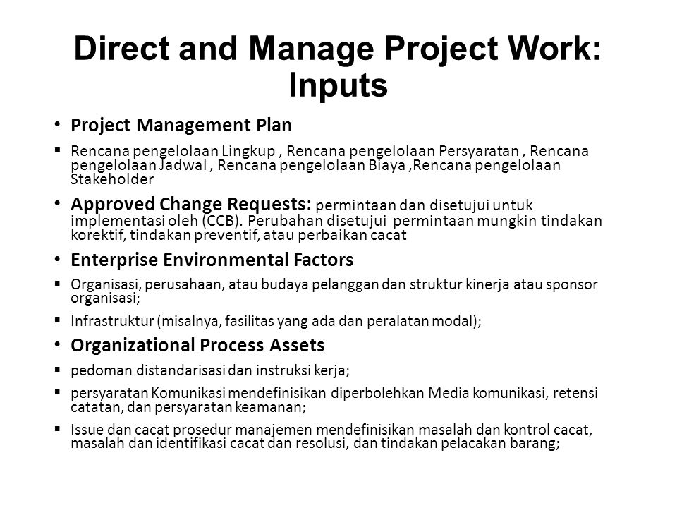 Direct and Manage Project Work: Inputs