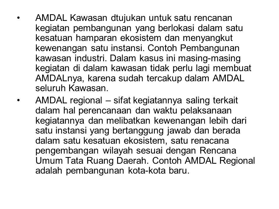 AMDAL Kawasan dtujukan untuk satu rencanan kegiatan pembangunan yang berlokasi dalam satu kesatuan hamparan ekosistem dan menyangkut kewenangan satu instansi. Contoh Pembangunan kawasan industri. Dalam kasus ini masing-masing kegiatan di dalam kawasan tidak perlu lagi membuat AMDALnya, karena sudah tercakup dalam AMDAL seluruh Kawasan.