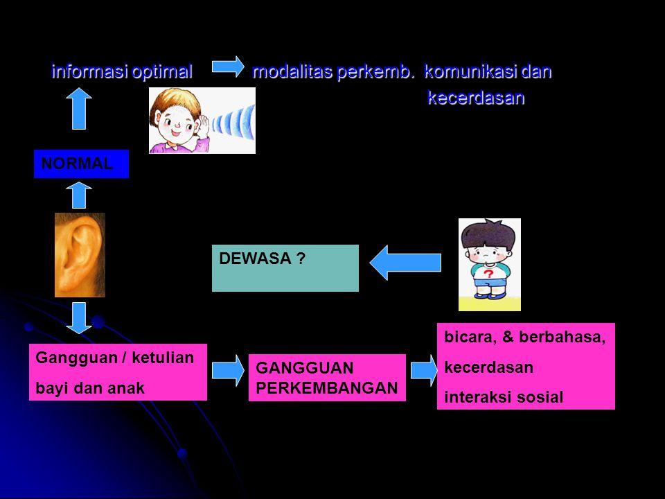informasi optimal modalitas perkemb. komunikasi dan kecerdasan