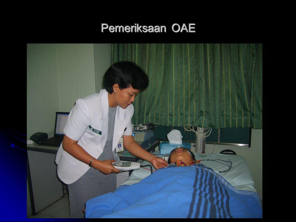 Pemeriksaan OAE