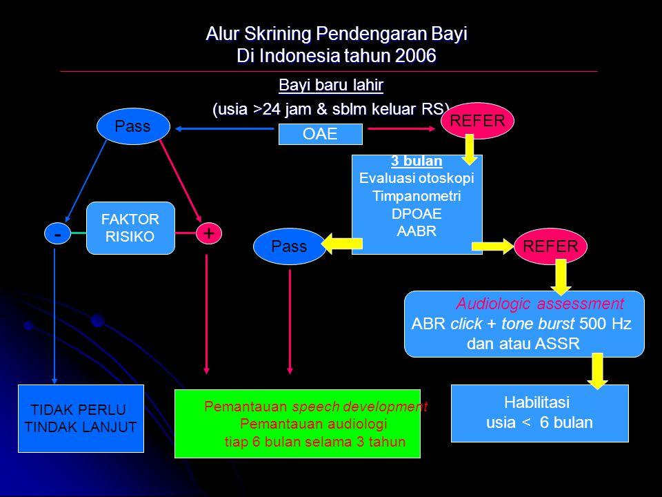 Alur Skrining Pendengaran Bayi Di Indonesia tahun 2006
