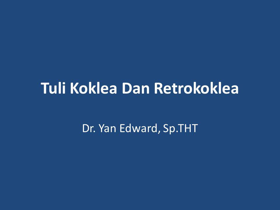 Tuli Koklea Dan Retrokoklea