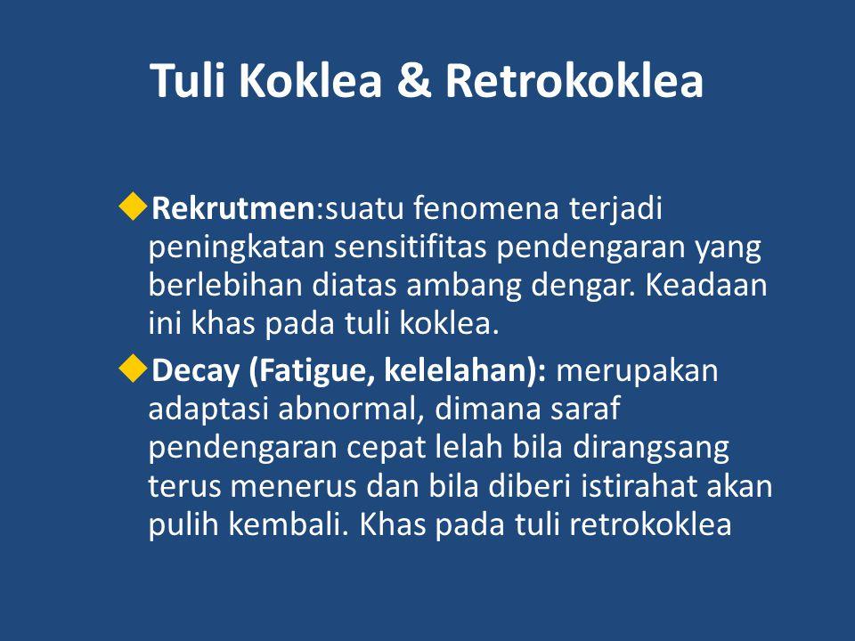 Tuli Koklea & Retrokoklea