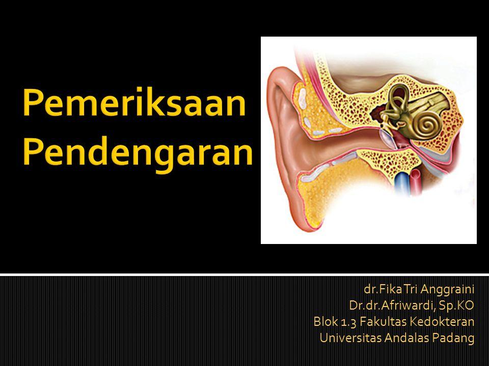 Pemeriksaan Pendengaran