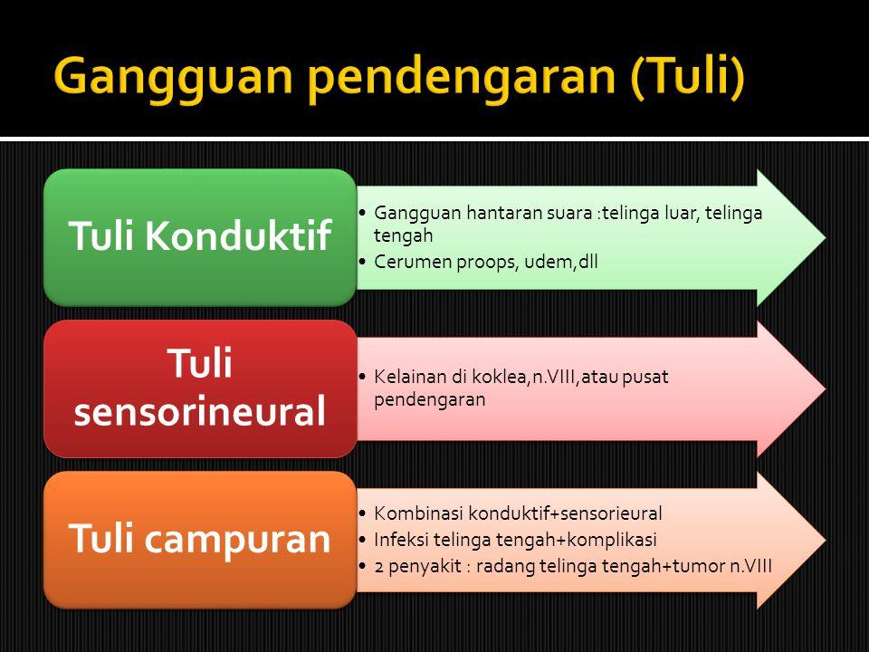 Gangguan pendengaran (Tuli)