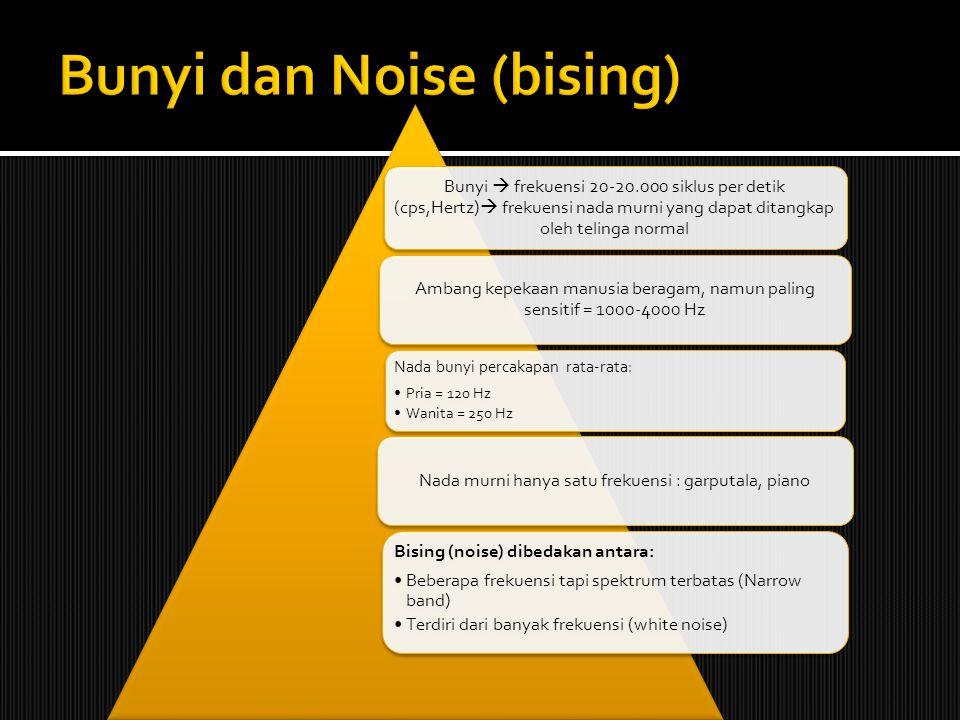 Bunyi dan Noise (bising)