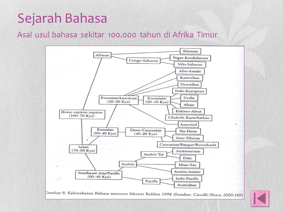 Sejarah Bahasa Asal usul bahasa sekitar 100.000 tahun di Afrika Timur