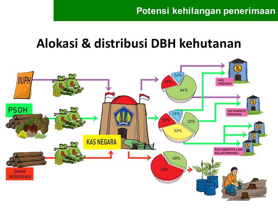 Alokasi & distribusi DBH kehutanan