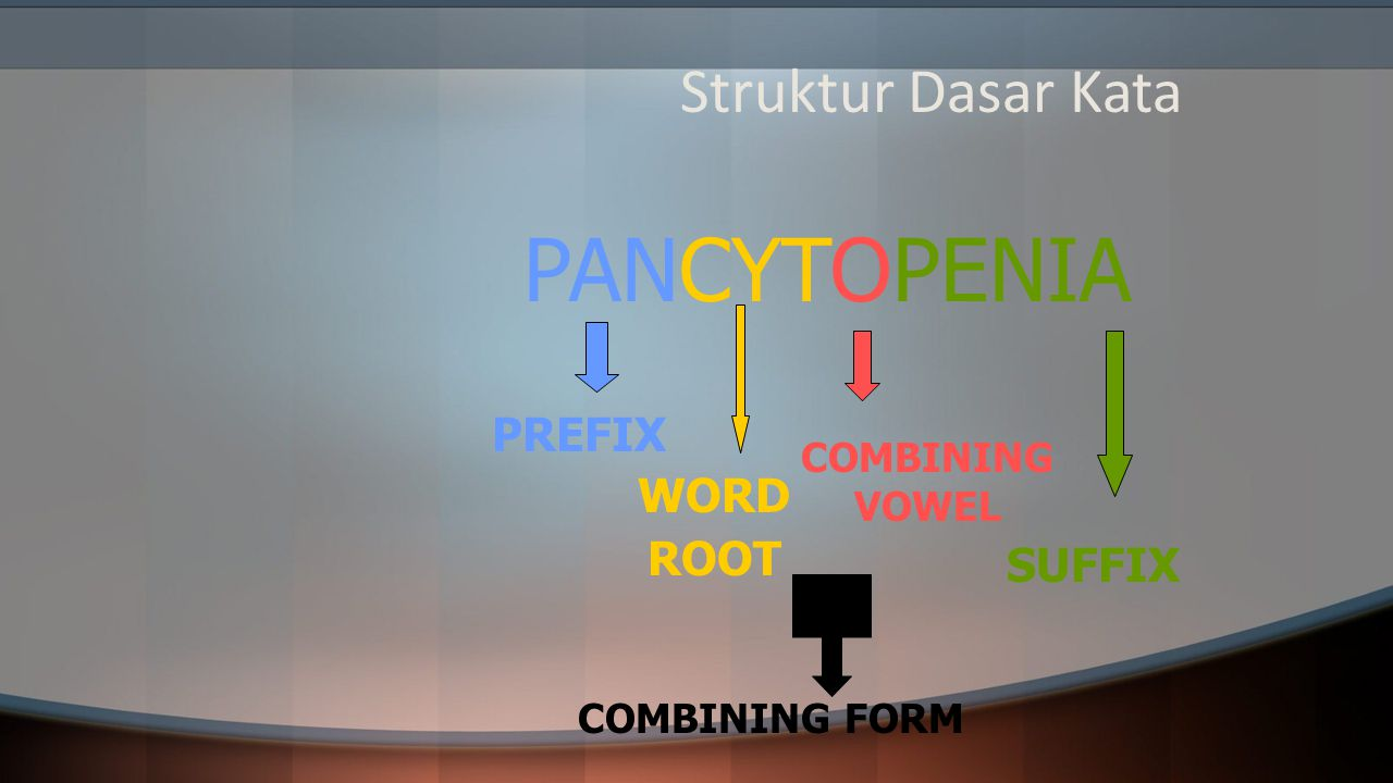PANCYTOPENIA Struktur Dasar Kata PREFIX WORD ROOT SUFFIX