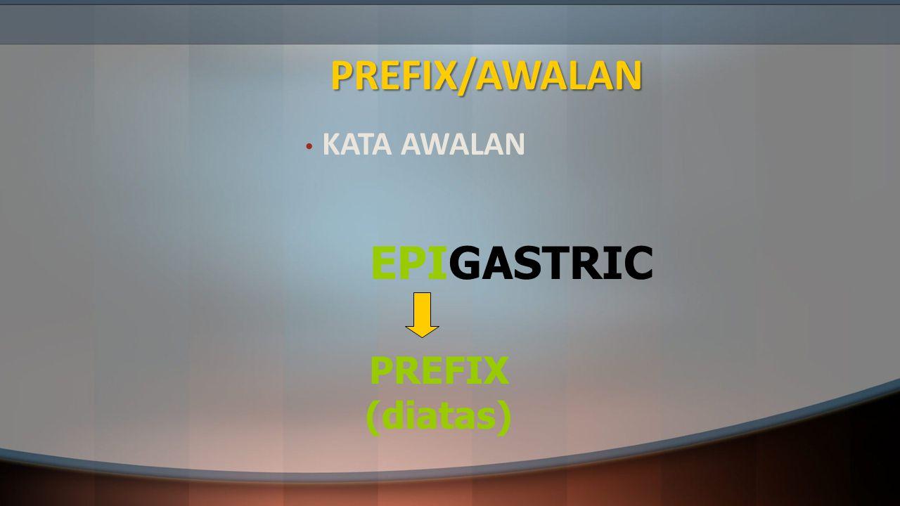 PREFIX/AWALAN KATA AWALAN EPIGASTRIC PREFIX (diatas)