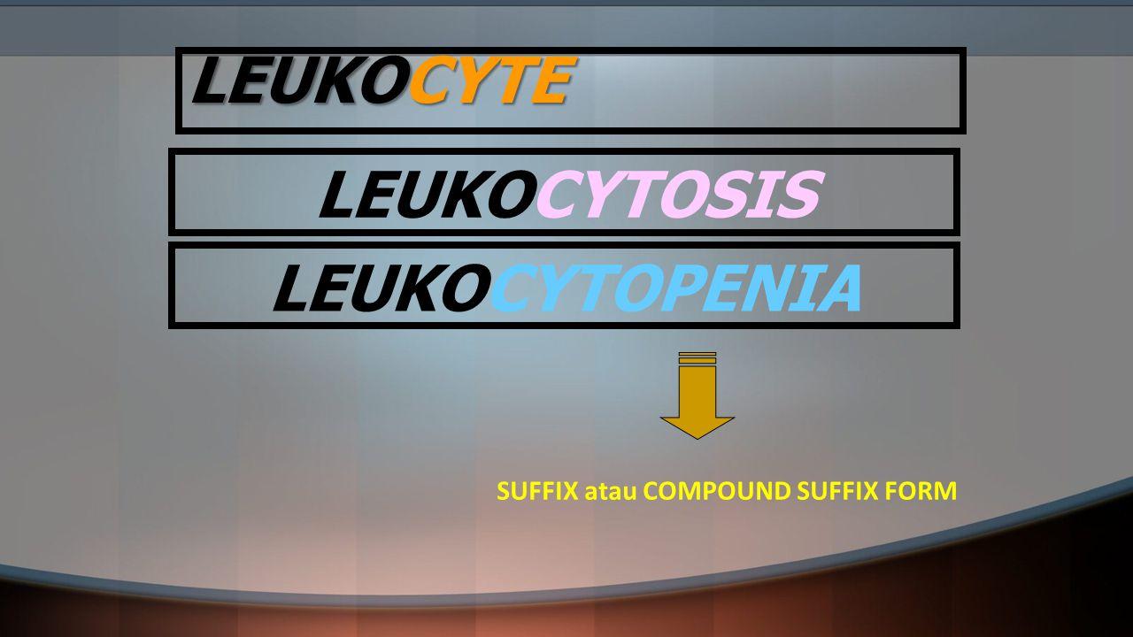 SUFFIX atau COMPOUND SUFFIX FORM